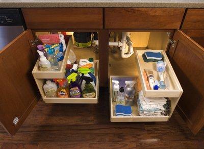 Items organized under the kitchen sink