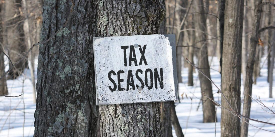 Tax Season sign on tree in the woods