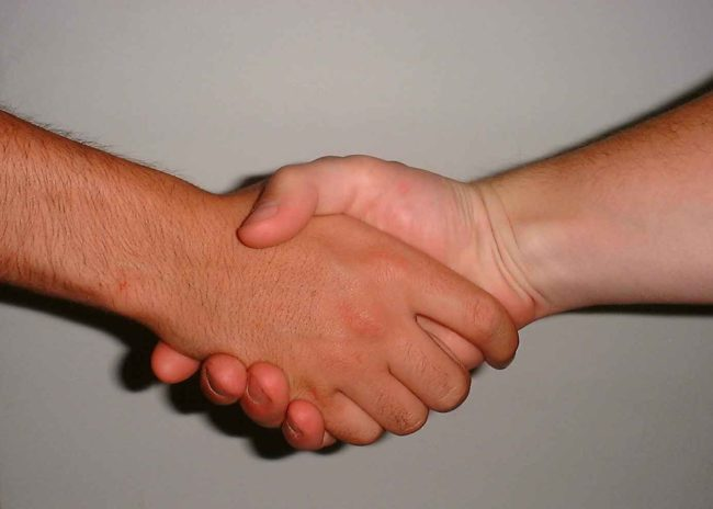 Two people shaking hands (symbol of an alliance)